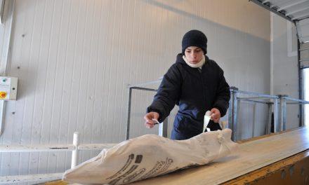 Japón abrió su mercado para la carne bovina y ovina de la Patagonia