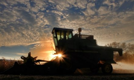 Sin crédito se paraliza la venta de maquinaria agrícola