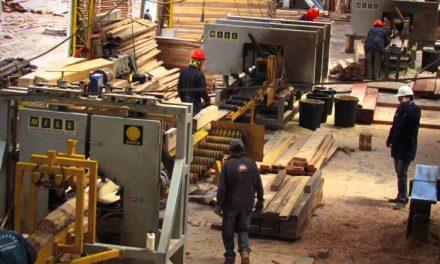 """Industria de la madera: afirman que el sector mueblero se encuentra """"en una situación crítica"""""""
