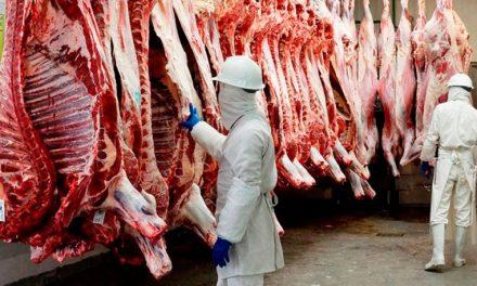 Luego de 17 años Argentina volverá a exportar carne bovina a los Estados Unidos