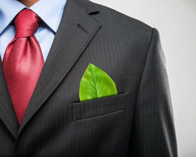Características de las empresas verdes: la economía verde