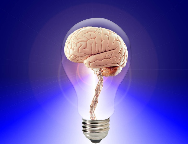 Las palancas fundamentales de la innovación en las empresas