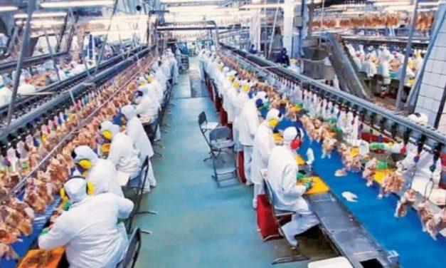 Dos grandes empresas alimenticias dejan el país por la recesión