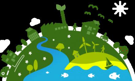 Economía Verde:  En San Juan producen biomasa con la integración del agro y la minería