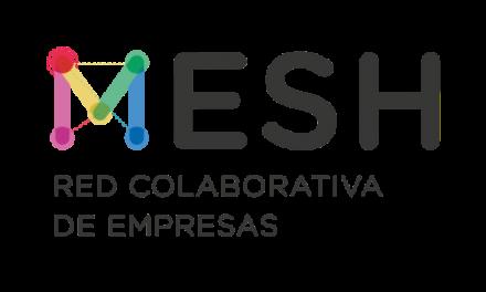 Se encuentra abierta la convocatoria para el Programa MESH – Red Colaborativa de Empresas