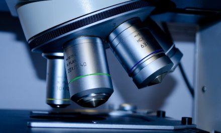 Convocatoria para seleccionar emprendimientos biotecnológicos