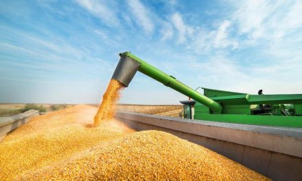 El Gobierno espera que ingresen más de US$25.000 millones por exportaciones agrícolas este año