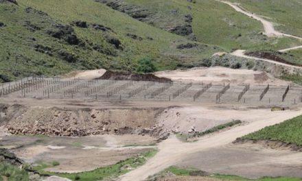 Córdoba: un viñedo sobre los escombros de la minería