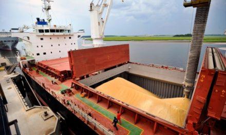 El agro empuja la balanza comercial hacia un superávit de U$S 1.373 millones