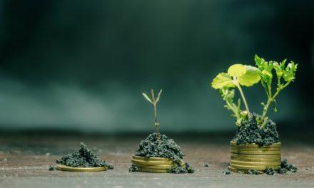 Bioeconomía: el que no la entienda, va a perder rentabilidad