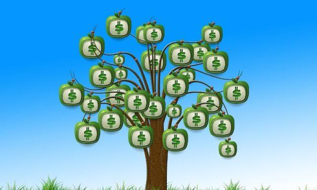 Pymes: las opciones para financiarse al momento de expandir el negocio