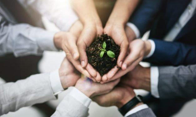 ¿Qué es una empresa social?