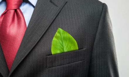 Empresas B: El camino hacia una nueva economía