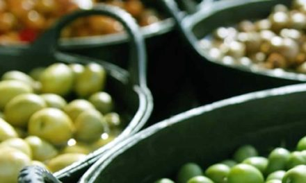 Se realizará en Catamarca la  Ronda de Negocios Internacional del Sector Olivícola