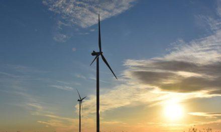Comienza a operar el parque eólico más grande del país