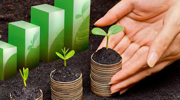 Las finanzas sustentables llegan a la banca local
