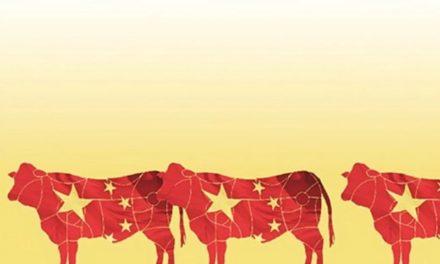 Argentina ya es el principal proveedor de carne vacuna en China