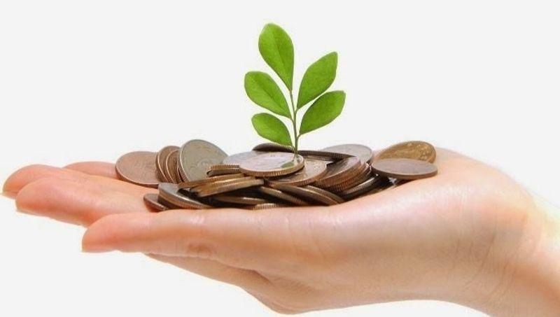 Emprendedores y PyMEs: Fondo Semilla