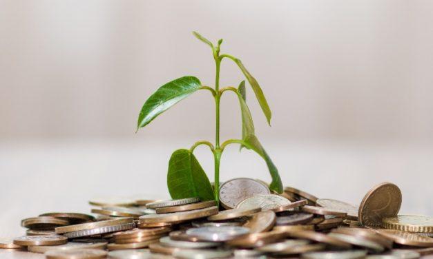 Fondo Semilla: está abierta la convocatoria para emprendimientos