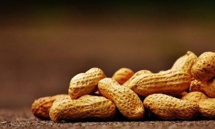 Las exportaciones de maní crecerán un 53% según la Cámara sectorial
