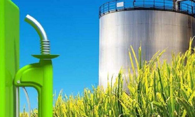 Entidades le solicitaron al Gobierno que prorrogue la ley de biocombustibles