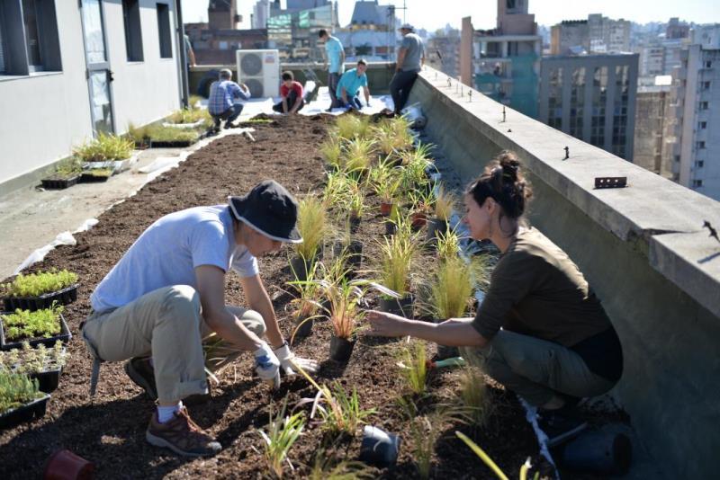 Córdoba sustentable: la municipalidad inaugura su techo verde