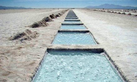 Proyectan un incremento exportador de minerales, especialmente el litio