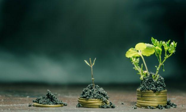 La implementación de Bonos Verdes, Sociales y Sustentables avanza en Argentina