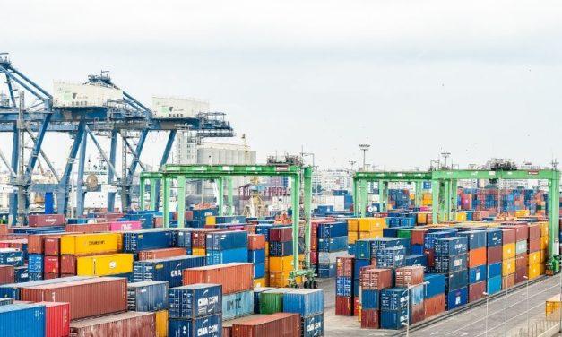 Las exportaciones de alimentos y bebidas crecieron más del 16% durante 2019