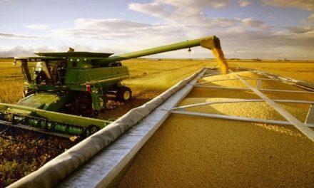 La industria técnica agrícola argentina continúa fortaleciéndose como exportadora en las ferias más grandes del mundo