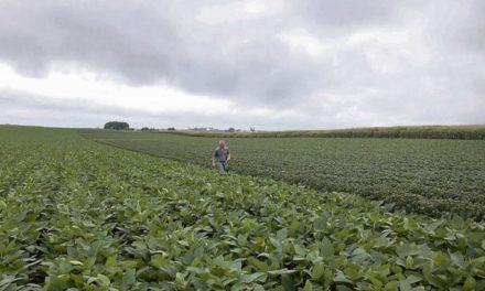 Gobierno modifica retenciones al campo: las lleva al 9% y la soja pagará 27%