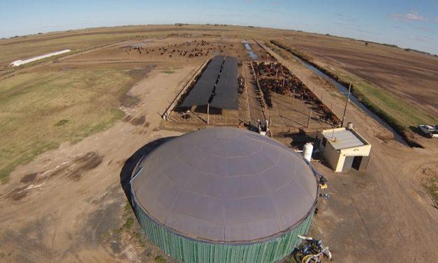 El INTA busca impulsar proyectos de biogás y biometano en el país