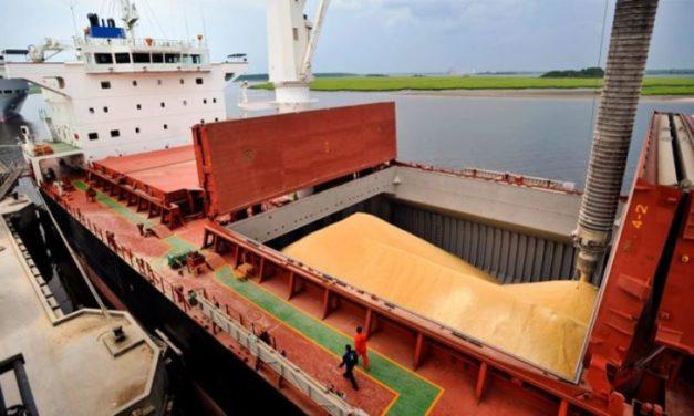 Retenciones al campo: el Gobierno analiza aumentar 3% los derechos de exportación