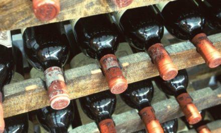 La exportación de vinos argentinos creció el 63,8% en enero