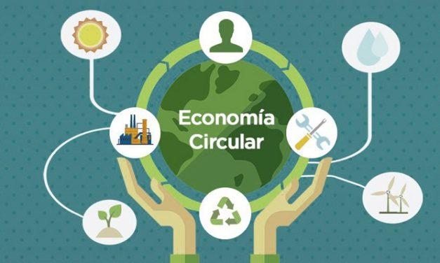 ¿Por qué todos hablan de Economía Circular?