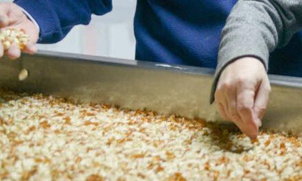 Pymes alimentarias: abren una nueva edición de Escuelas de formación en Agronegocios