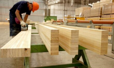 Capacitación en Sistema de Calidad para el desarrollo de las PyME en la industria maderera