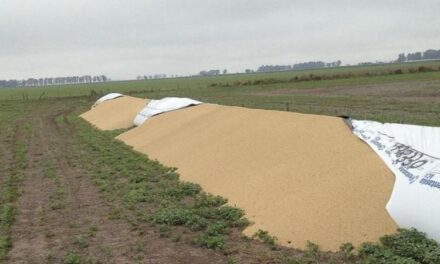 La Cámara de Comercio de Córdoba manifestó su apoyo a los productores rurales
