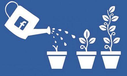 Unas 600 pymes argentinas recibirán apoyo económico de Facebook
