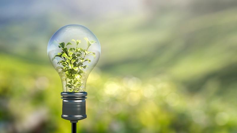Acelerar la transformación, hacia un mundo más sostenible, mediante la educación ambiental
