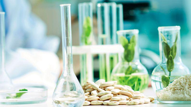 """Se vienen las jornadas de """"ciencia y tecnología para innovación en productos alimenticios"""""""