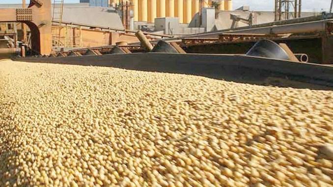 Las exportaciones de granos en 2020 fueron el segundo mayor volumen de la historia