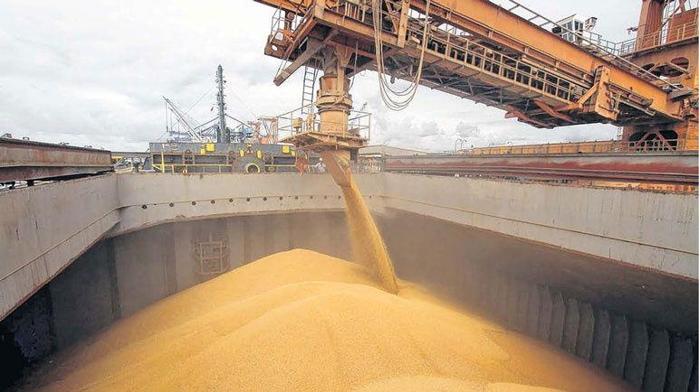 Prevén que las exportaciones de maíz superen los US$ 8.600 millones